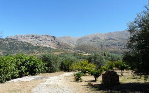 Finca-Obstbaeume-Rohbau-Quelle-Periana-Andalusien-02